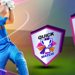 Playing The Cricket Game Online For Fun Playing