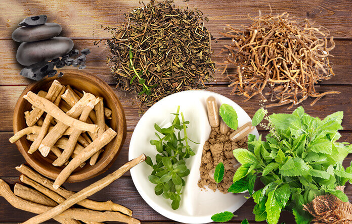 Herbs-to-Reduce-1