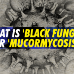 Treatment of Mucormycosis – The 'black fungus' maiming Covid individuals in India