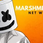 Marshmello Net Worth 2021, Record, Salary, Biography, Career, Weight and Wiki